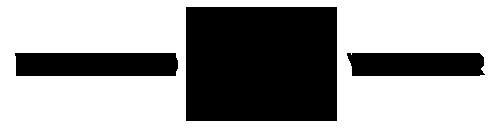 VANGUARD VOYAGER logo