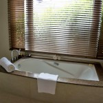 THE CRIMSON RESORT & SPA – MACTAN, CEBU – PHILIPPINES - Relaxing tub with the view of the garden
