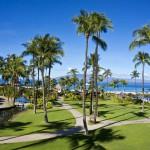 Sheraton Maui - Hawaii - Coconut trees