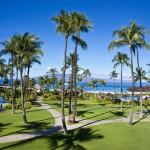 Sheraton Maui - Hawaii - Palm trees