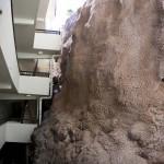 Sheraton Maui - Hawaii - Holy rock