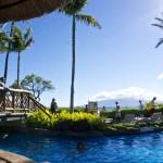 Sheraton Maui - Hawaii - Pool area and palmtrees