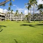 Sheraton Maui - Hawaii - Green garden