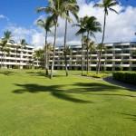 Sheraton Maui - Hawaii - Greenery