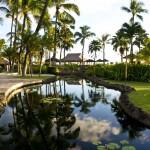 Sheraton Maui - Hawaii - Small lake in the hotel