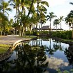 Sheraton Maui - Hawaii - River in the hotel