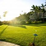 Sheraton Maui - Hawaii - Hotel and garden