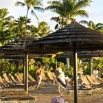 Sheraton Maui - Hawaii - Pool umbrellas
