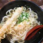 Udon noodles with Tempura Prawn