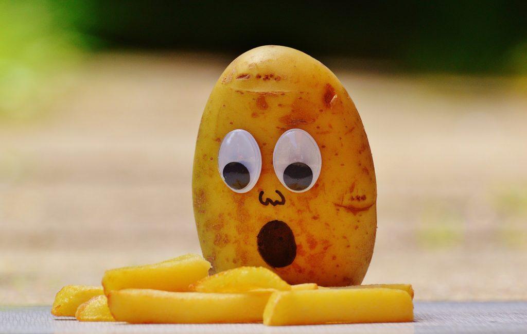 Best Fries in Antwerp