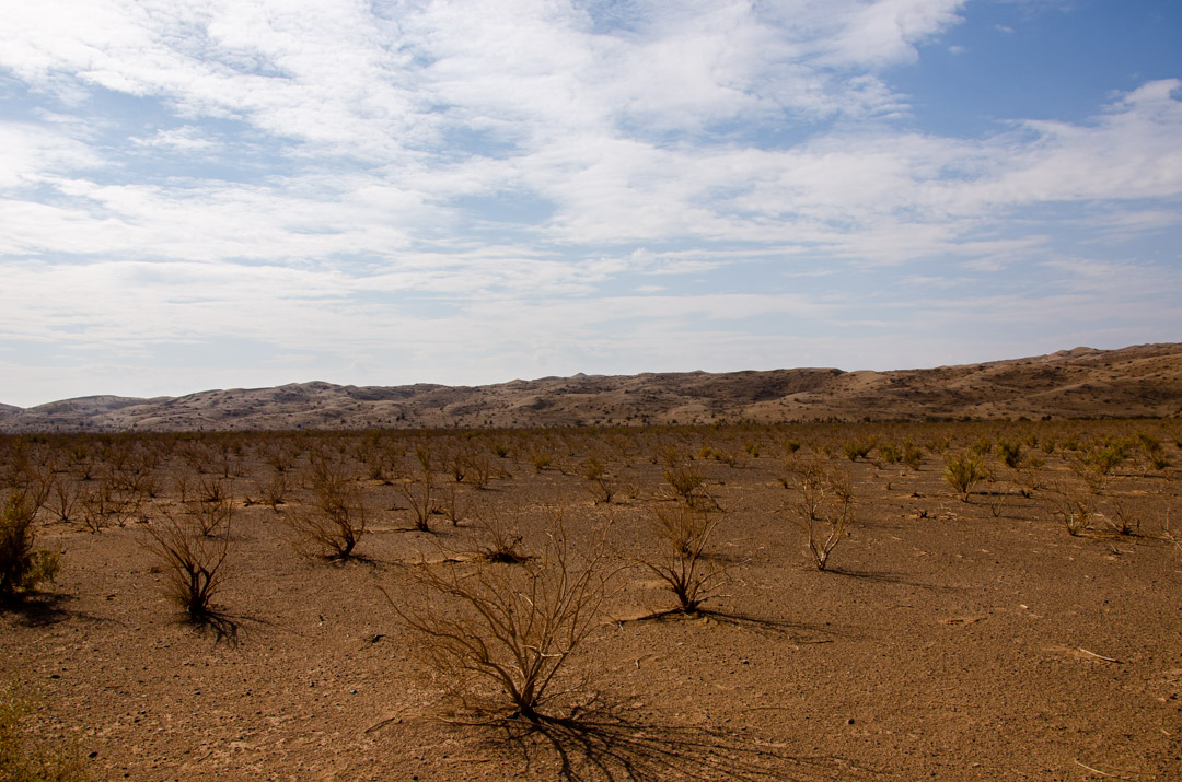 Desert Trip Iran